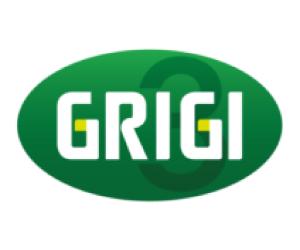 Gruppo Grigi
